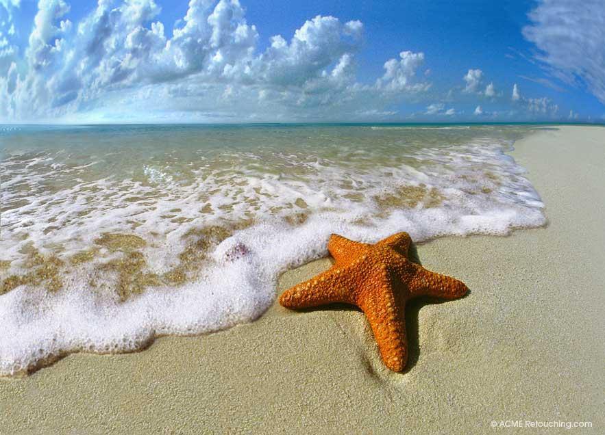 Starfish on Tropical Beach © ACME-Retouching.com ...